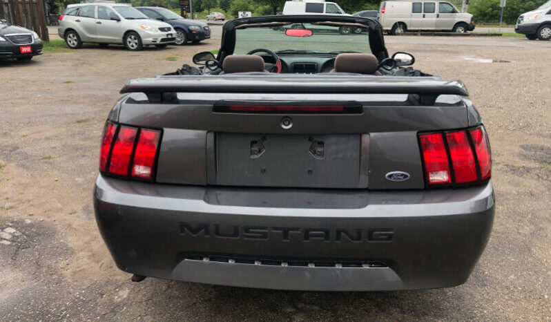 Ford Mustang/Certified/Convertible/Clean Car-proof full